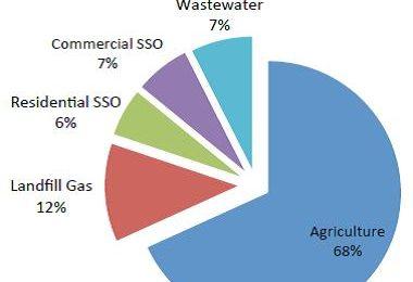 marché mondial de la digestion anaérobie