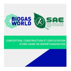 SAE design of biogas plant