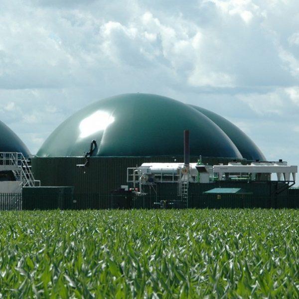 HoSt Farm Scale Biogas Plants Main