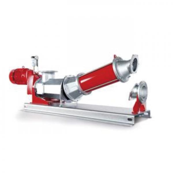 VOGELSANG - Pompe à rotor excentré CavityComfort