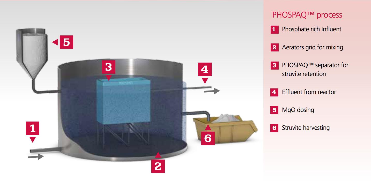 PHOSPAQ Process