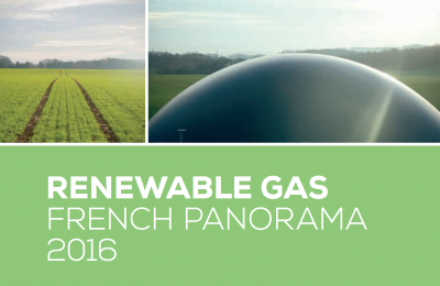 Renewable Gas French Panorama 2016