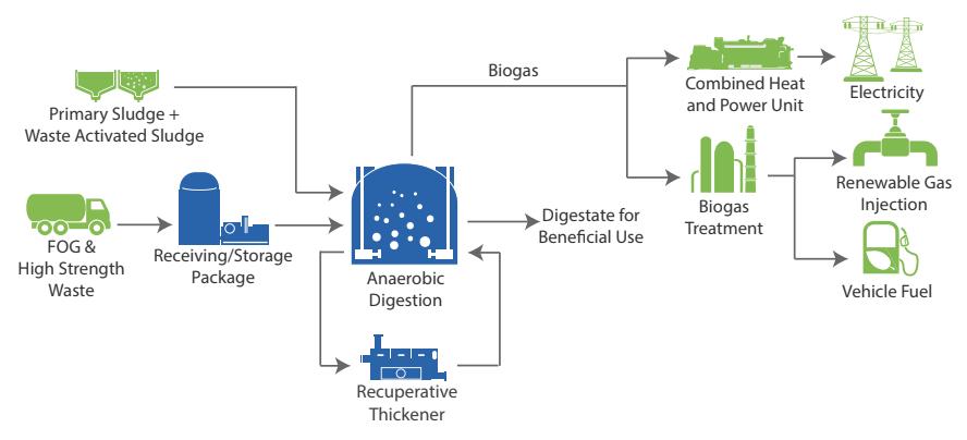 Anaergia - le procédé de biogaz du Omnivore: mises à niveau du digesteur anaérobie