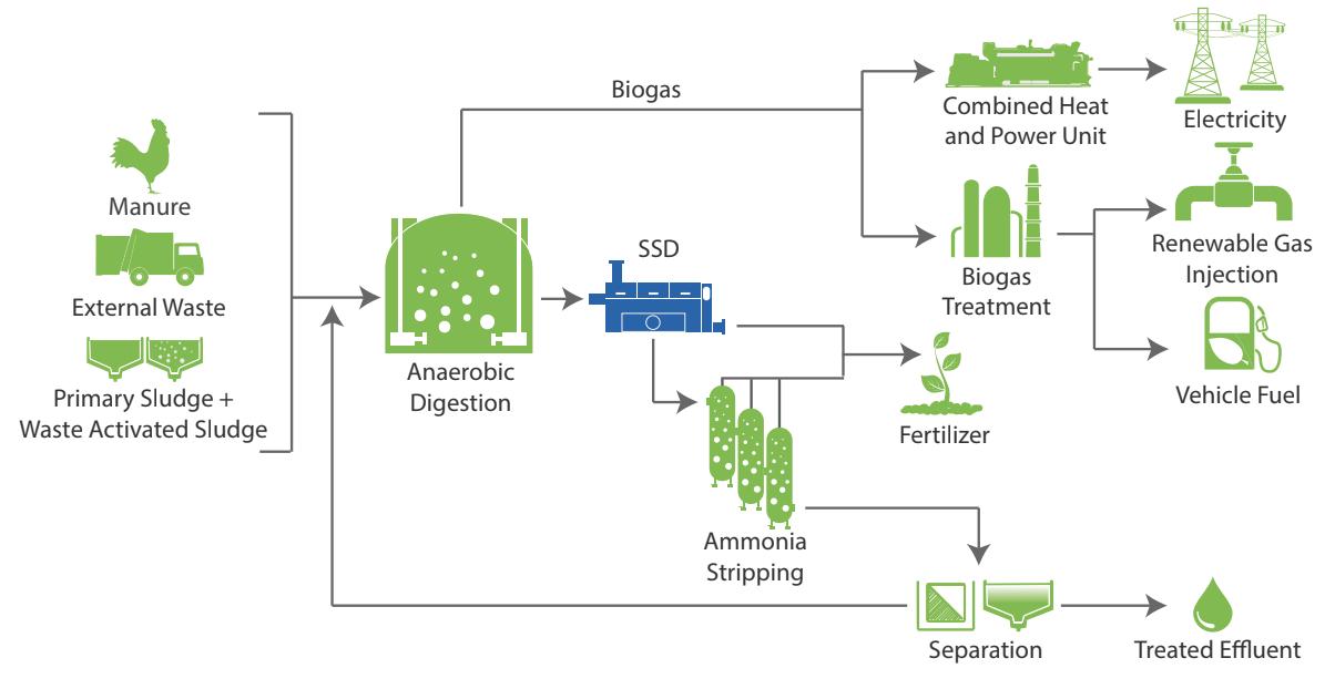 Anaergia - Procédé de production et d'utilisation du biogaz avec le déshydrateur de boues
