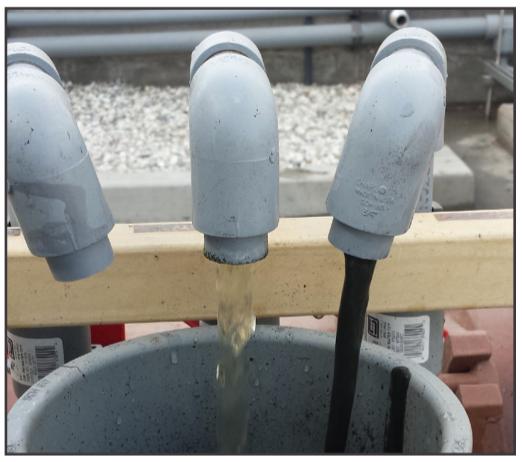 ANAERGIA - Sludge Screw Thickener (SST) process