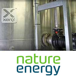 Nature Energy-Flexfeed
