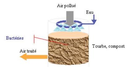biofiltre: réduire les odeurs du biogaz pour obtenir l'acceptabilité sociale d'un projet de biogaz