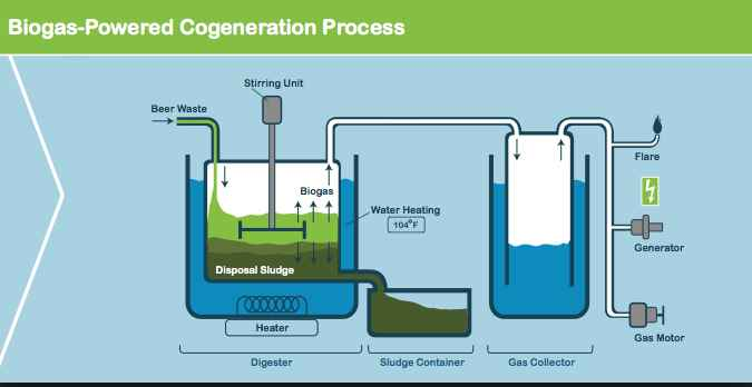 Biogas for heat: how does CHP unit works?