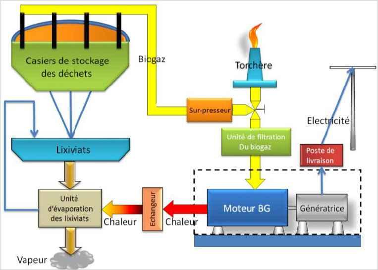 Le biogaz pour se chauffer: Fonctionnement d'une unité de cogénération