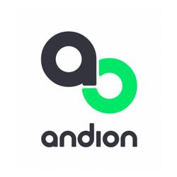 Andion Group