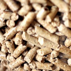Biomass Supply Services - Ecostrat