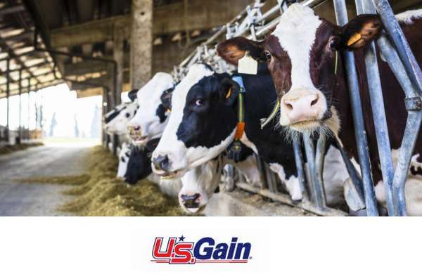 U.S. Gain Expands Investment in Dairy Industry