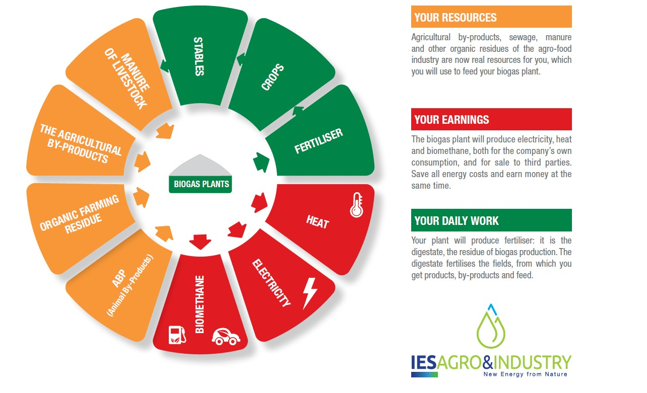 IES Biogas - Agricultural and agro industrial biogas plants