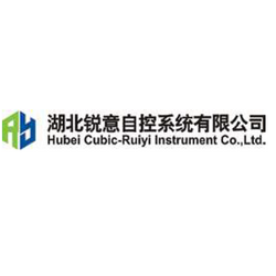 Hubei Cubic-Ruiyi