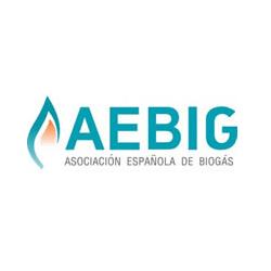 AEBIG