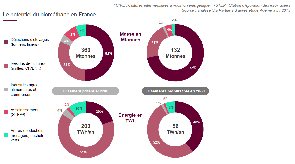 Marché du biogaz et du biométhane en France: Types d'intrants utilisés et potentiel du biométhane