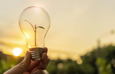 actualité-biogaz-La France travaille sur le droit à l'injection et l'adoption du gaz vert se multiplie dans les municipalités - Photo d'une ampoule devant une forêt avec un coucher de soleil