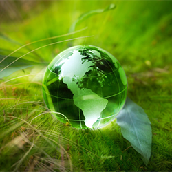 Black & Veatch - Environmental services - Picture of the earth in the green grass