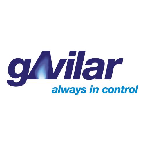 gAvilar BV