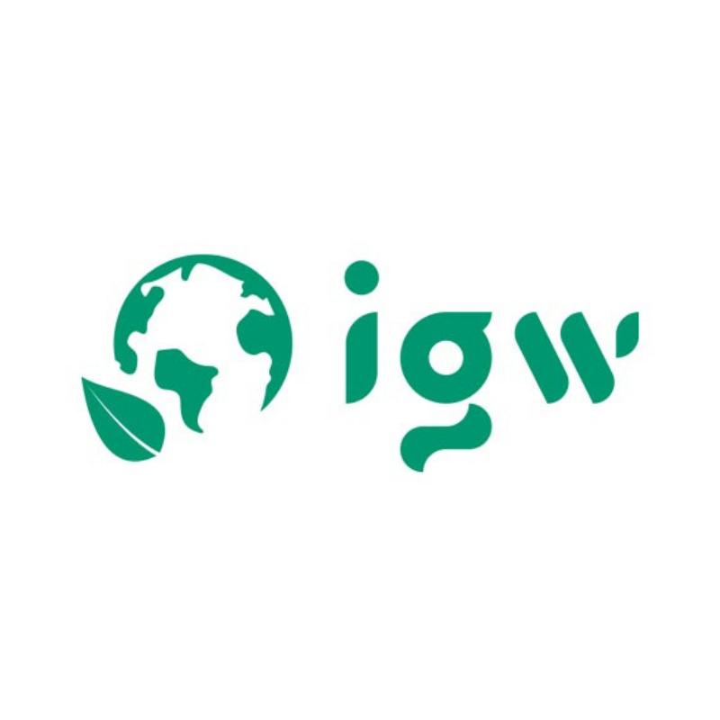 I.G.W srl
